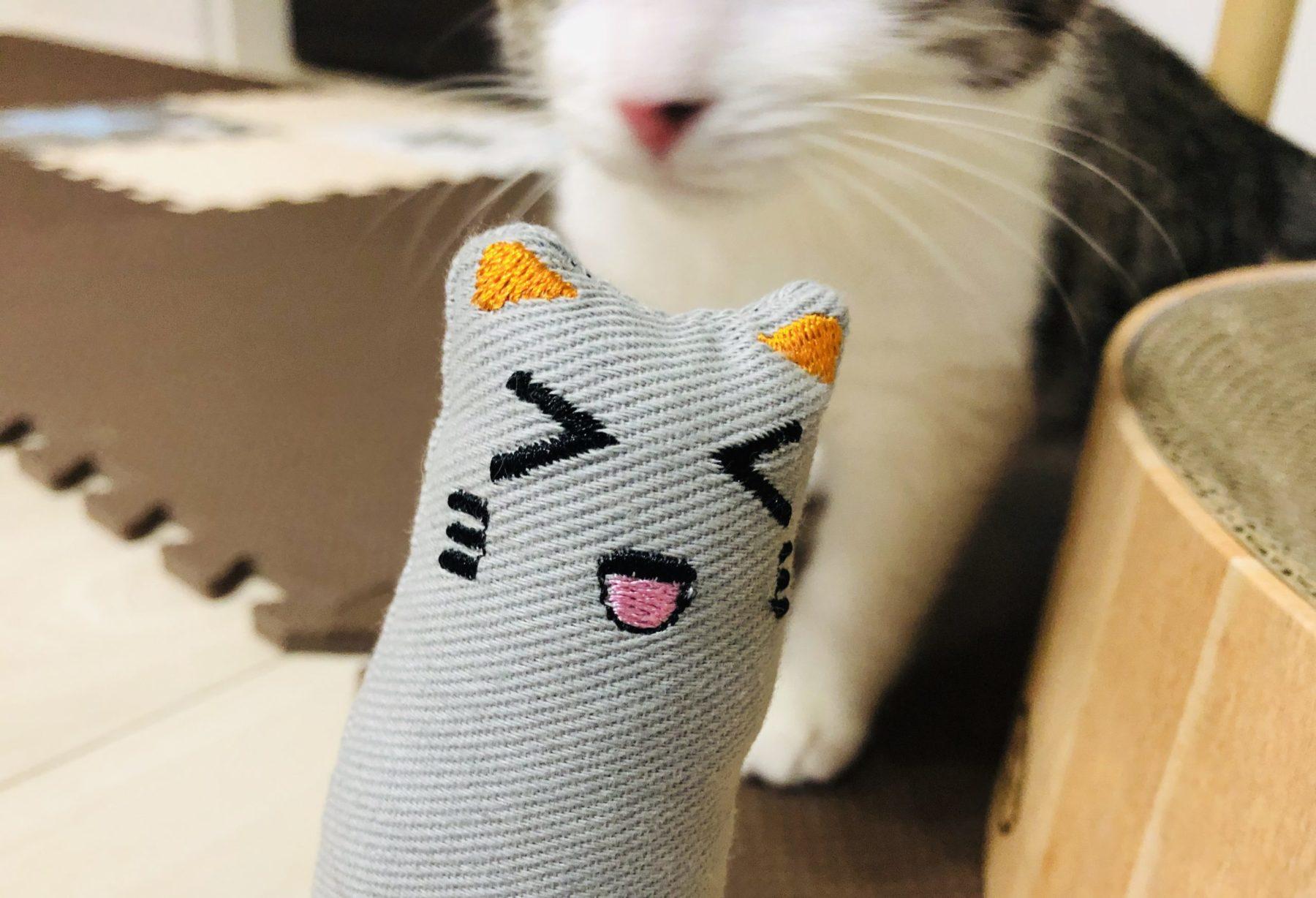 子猫に新しいおもちゃをあげました[またたびトイ けりぐるみ 猫]