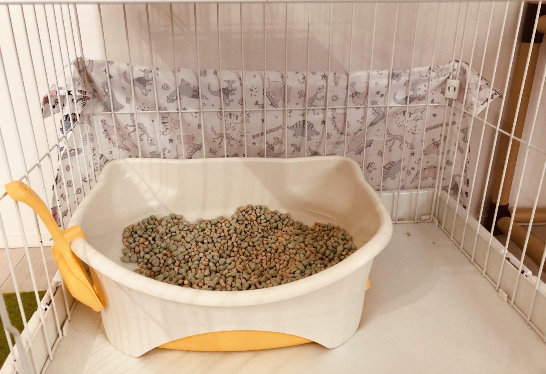 【猫のトイレ】アイリスオーヤマからデオトイレに変えた理由